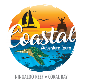 Coastal Adventure Tours, Ningaloo Reef Coral Bay